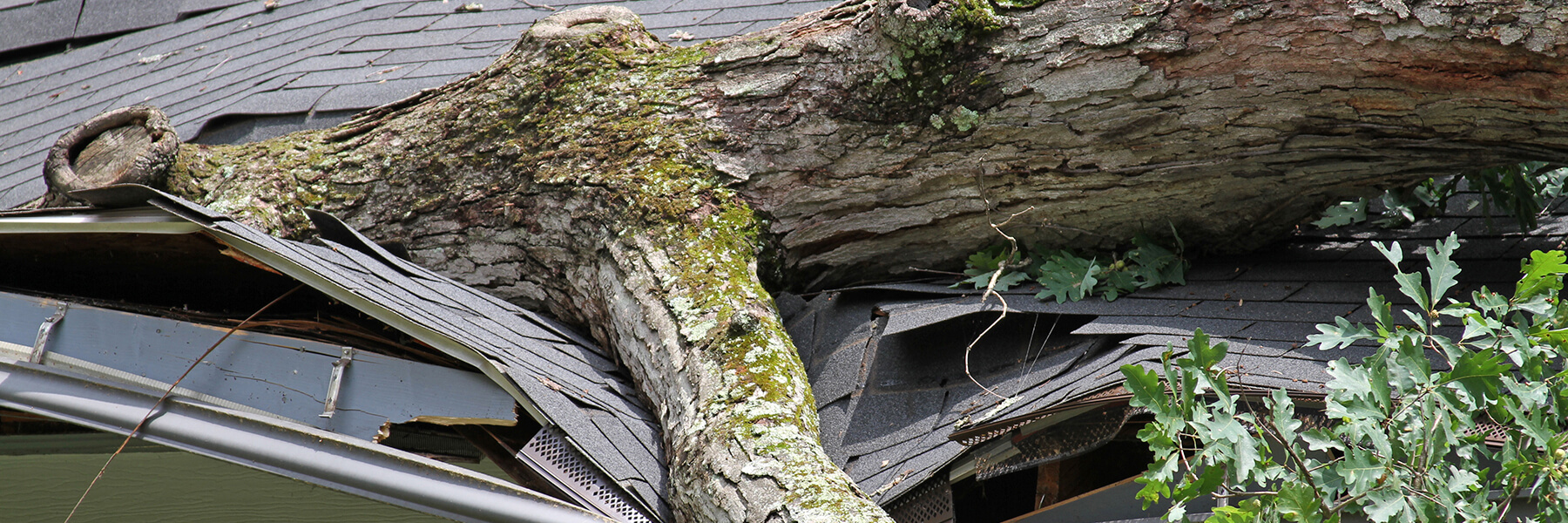 Dealing with Storm Damage and Insurance Claims in Florida