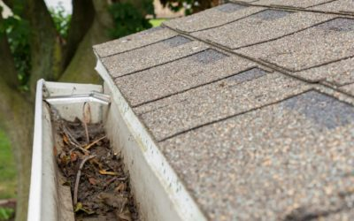 How to Prep Your Roof for Florida's Rainy Season